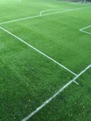 Esecuzioni ex novo o trasformazione campi sportivi esistenti nel rispetto dell'ambiente.